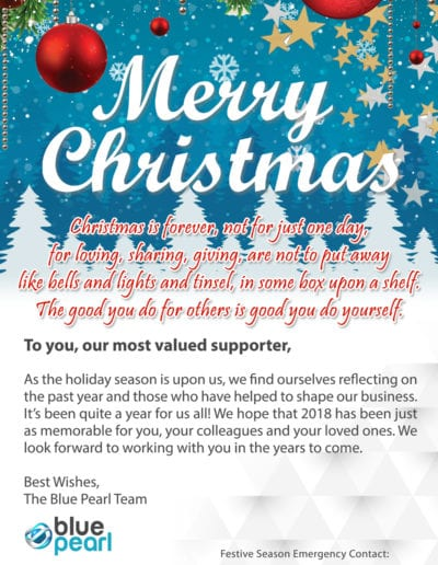 Merry Christmas From The Blue Pearl Team